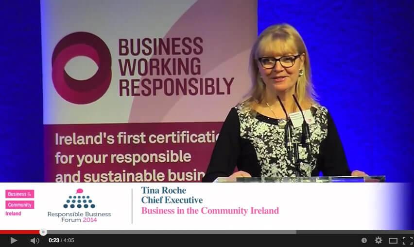 Responsible Business Forum, Dublin Castle, 11 Nov 2014.