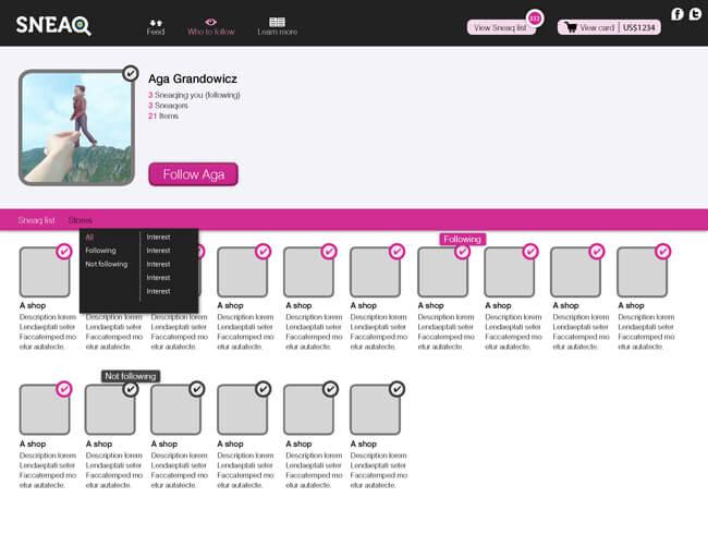 SNEAQ_website.